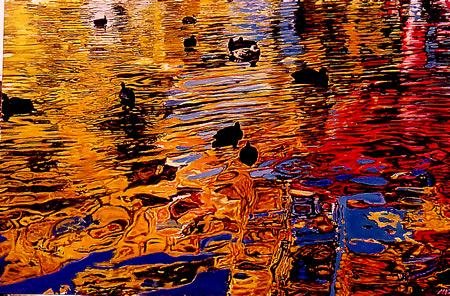 """Ducks , 42"""" X 62"""" 2002 oil on canvas"""